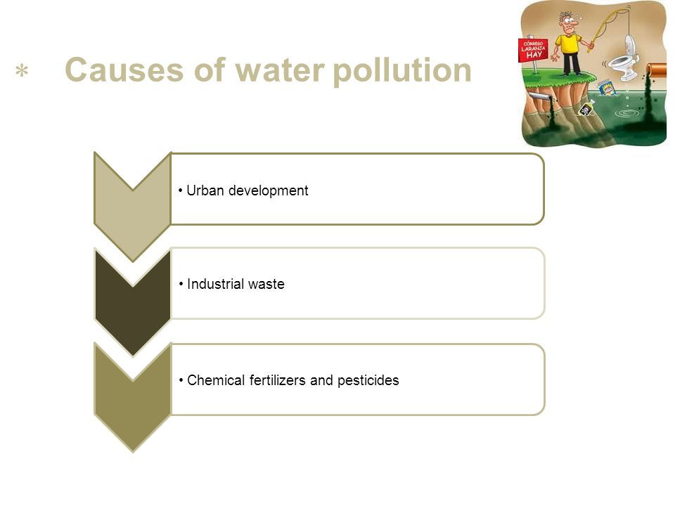 Question 2 A C B Bacterial, organic,chemical,thermal and radioactive; Organic and Thermal; Bacterial, organic,chemical and thermal;  Several types of water pollution…