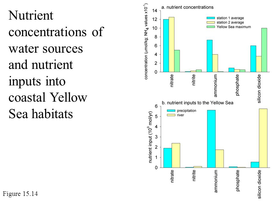 Nutrient concentrations of water sources and nutrient inputs into coastal Yellow Sea habitats Figure 15.14