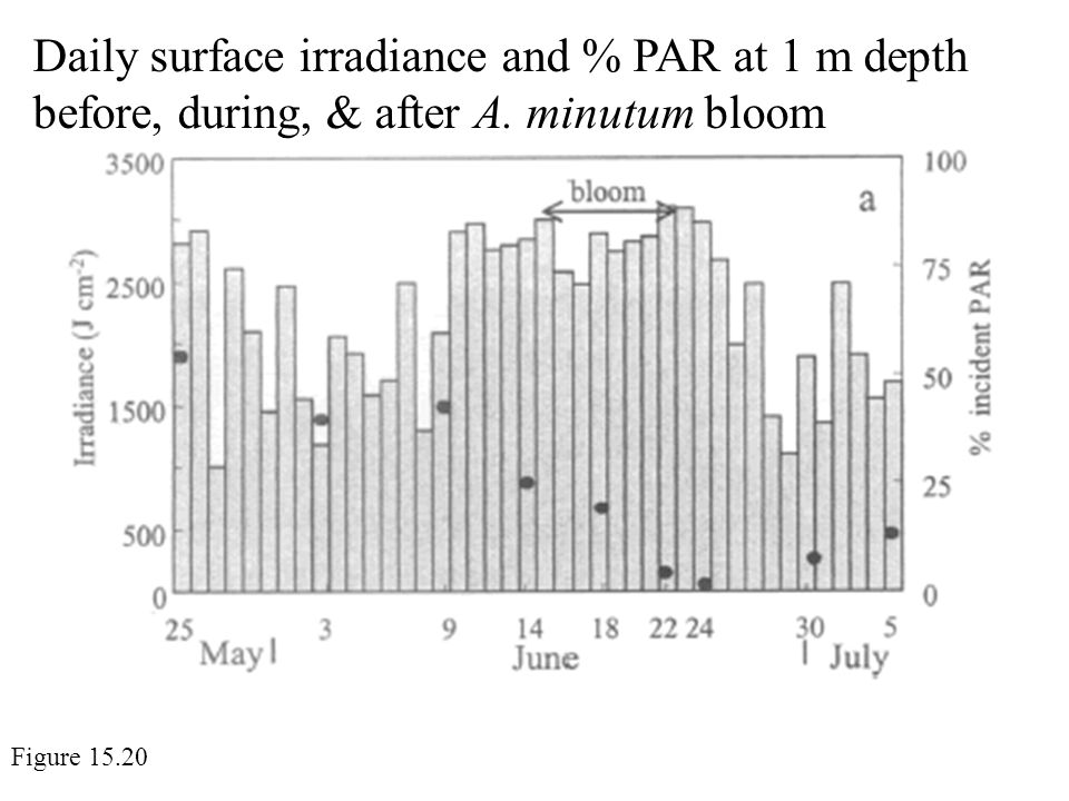 Daily surface irradiance and % PAR at 1 m depth before, during, & after A.