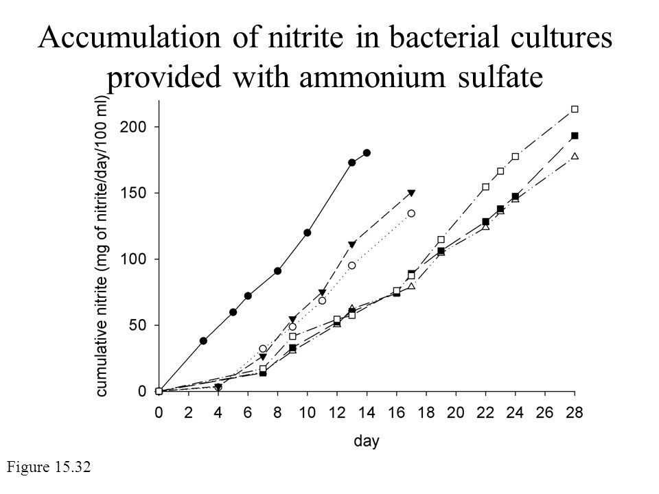 Accumulation of nitrite in bacterial cultures provided with ammonium sulfate Figure 15.32