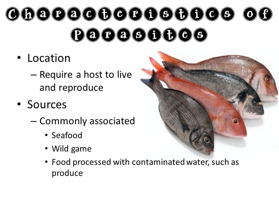 Location – Require a host to live and reproduce Sources – Commonly associated Seafood Wild game Food processed with contaminated water, such as produc
