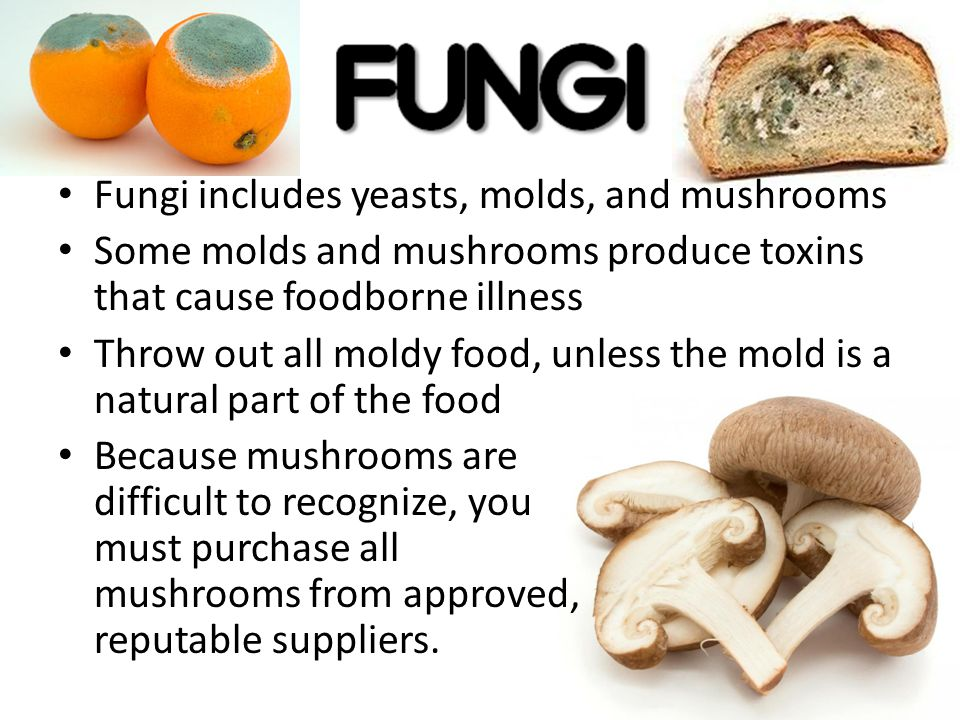 Fungi includes yeasts, molds, and mushrooms Some molds and mushrooms produce toxins that cause foodborne illness Throw out all moldy food, unless the