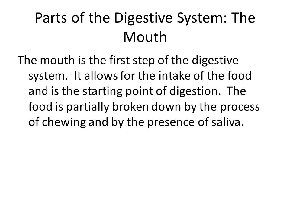 Parts of the Digestive System: The Mouth The mouth is the first step of the digestive system. It allows for the intake of the food and is the starting