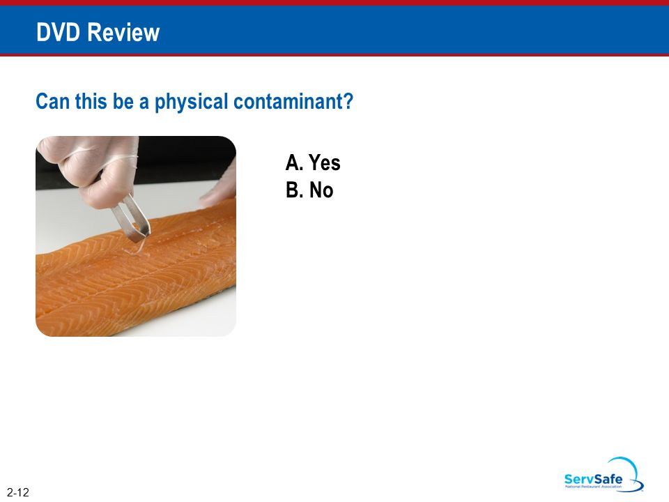 A. Yes B. No Can this be a physical contaminant? 2-12 DVD Review