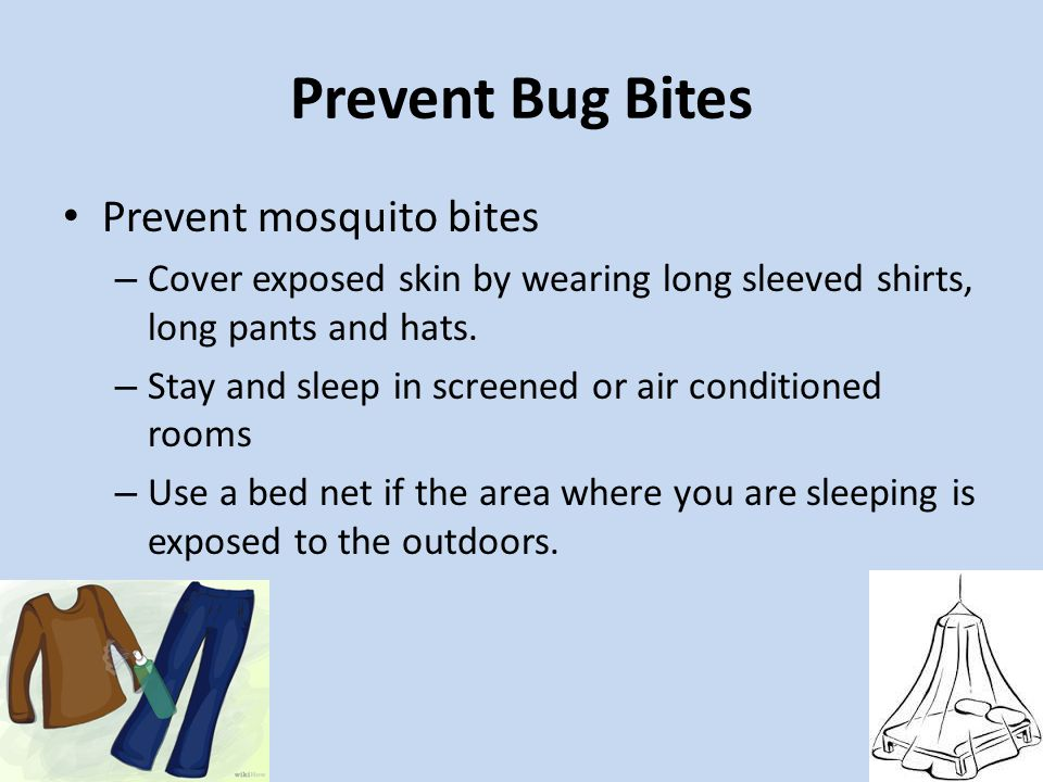 Prevent Bug Bites Prevent mosquito bites – Cover exposed skin by wearing long sleeved shirts, long pants and hats. – Stay and sleep in screened or air