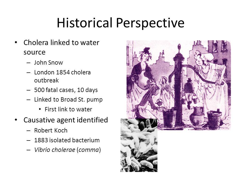 Historical Perspective Cholera linked to water source – John Snow – London 1854 cholera outbreak – 500 fatal cases, 10 days – Linked to Broad St.