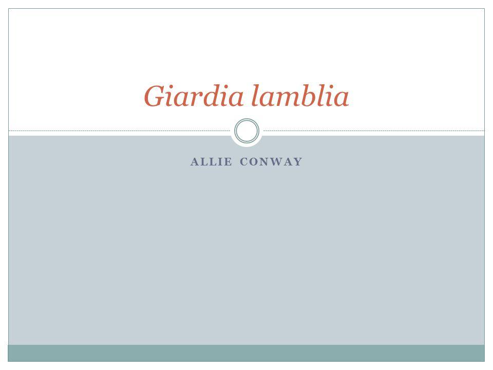 ALLIE CONWAY Giardia lamblia