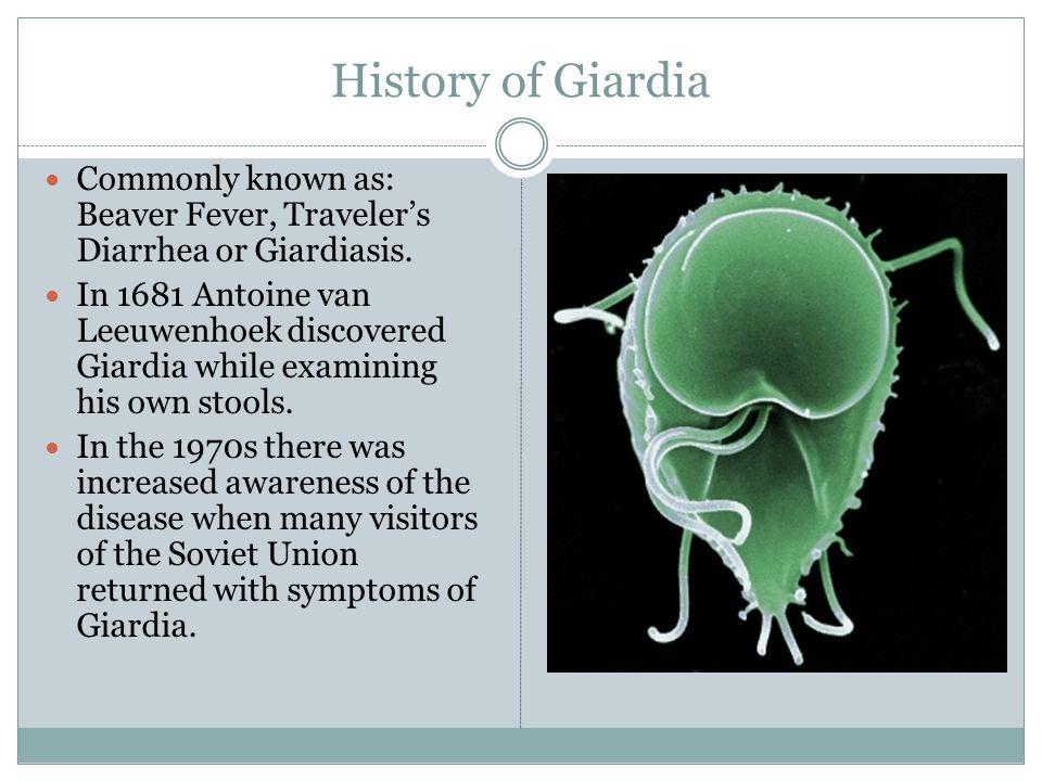 History of Giardia Commonly known as: Beaver Fever, Traveler's Diarrhea or Giardiasis.