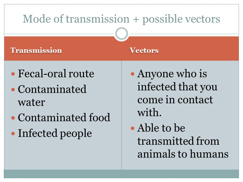 Transmission Vectors Fecal-oral route Contaminated water Contaminated food Infected people Anyone who is infected that you come in contact with. Able