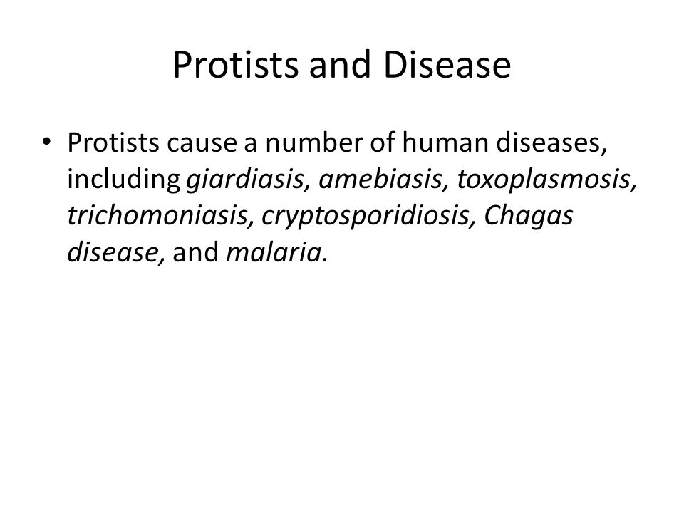Protists and Disease Protists cause a number of human diseases, including giardiasis, amebiasis, toxoplasmosis, trichomoniasis, cryptosporidiosis, Chagas disease, and malaria.