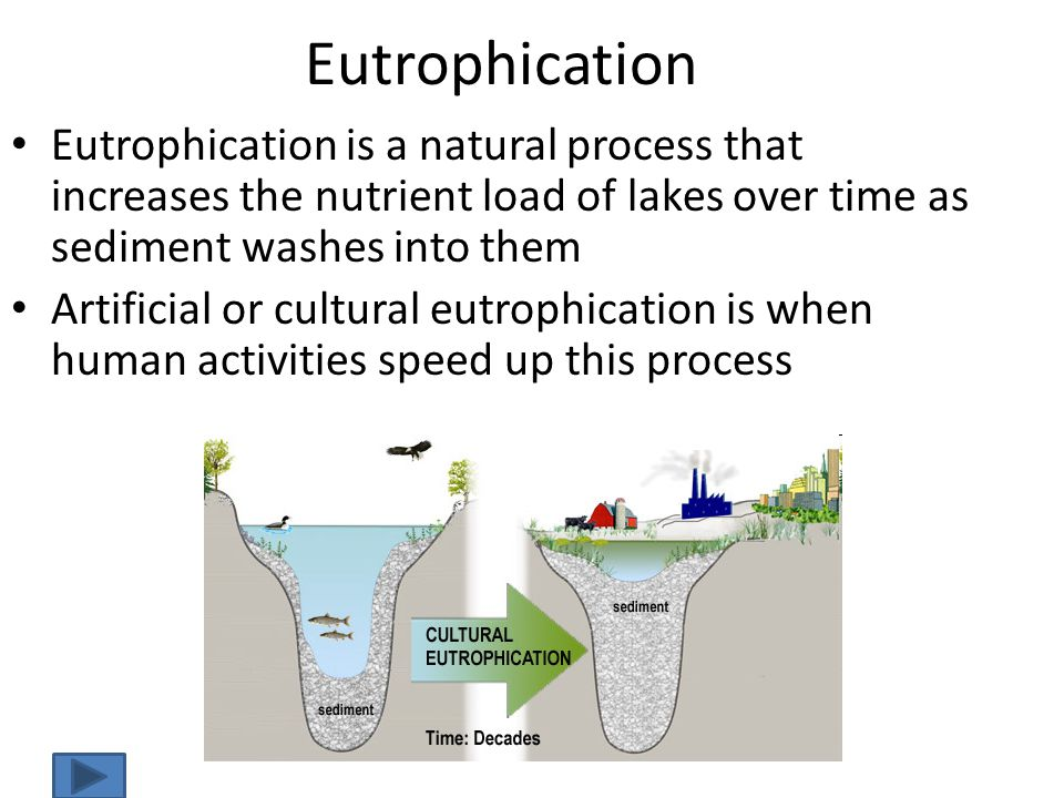 Eutrophication Eutrophication is a natural process that increases the nutrient load of lakes over time as sediment washes into them Artificial or cult