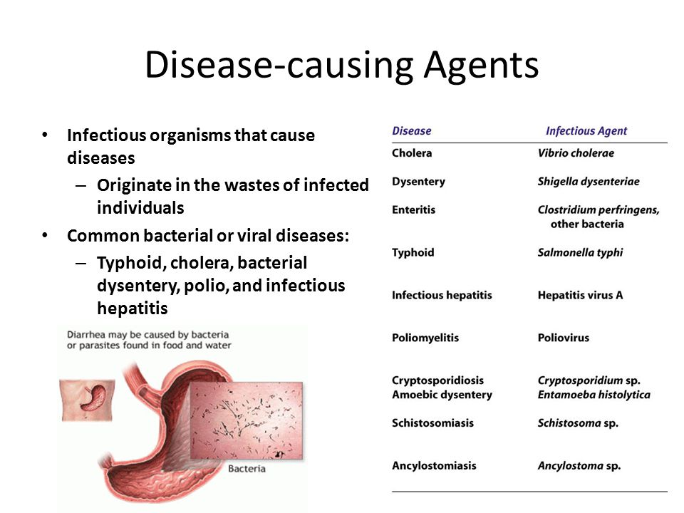Some human diseases Transmitted by Polluted water DiseaseInfectious AgentType of organismMajor symptoms CholeraVibrio choleraeBacteriumSevere diarrhea, vomiting DysenteryShigella dysenteriaeBacteriumInfection of the colon causes painful diarrhea with mucus and blood in the stools EnteritisClostridium perfringensBacteriumInflammation in the small intestine causes general discomfort, loss of appetite, and diarrhea.