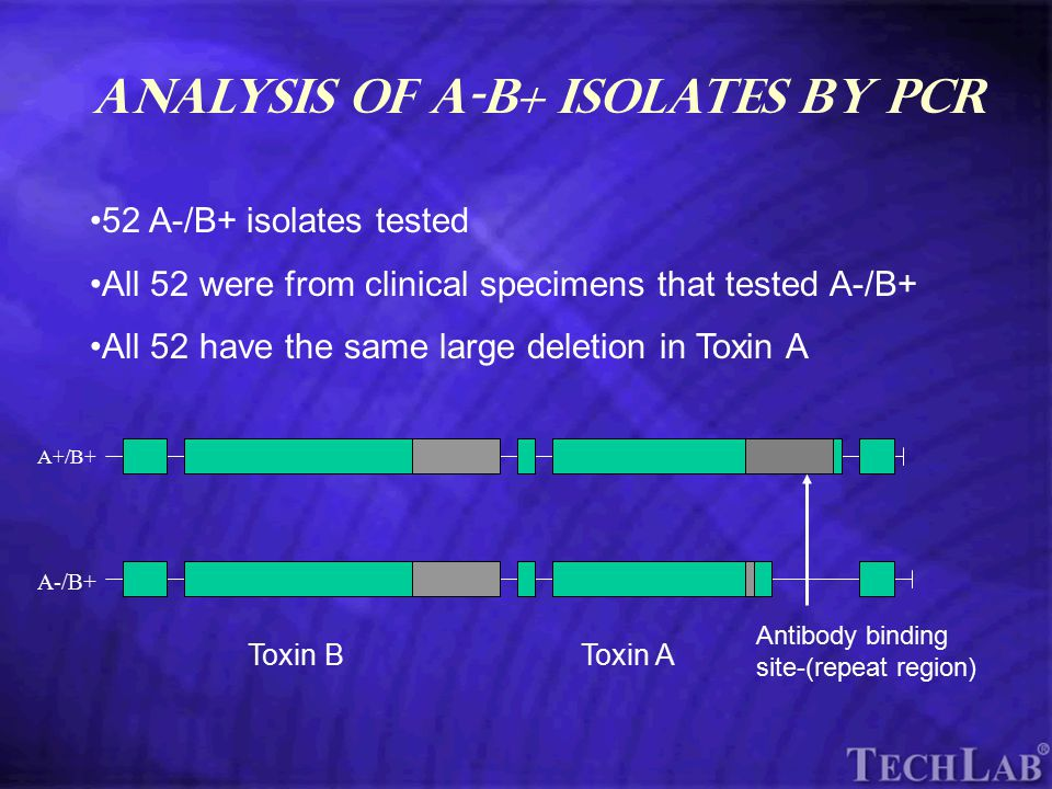 TechLab Analysis of A-B+ isolates by PCR 52 A-/B+ isolates tested All 52 were from clinical specimens that tested A-/B+ All 52 have the same large deletion in Toxin A A+/B+ A-/B+ Toxin BToxin A Antibody binding site-(repeat region)