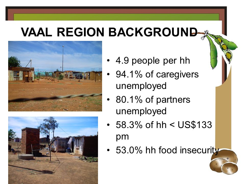 4.9 people per hh 94.1% of caregivers unemployed 80.1% of partners unemployed 58.3% of hh < US$133 pm 53.0% hh food insecurity VAAL REGION BACKGROUND