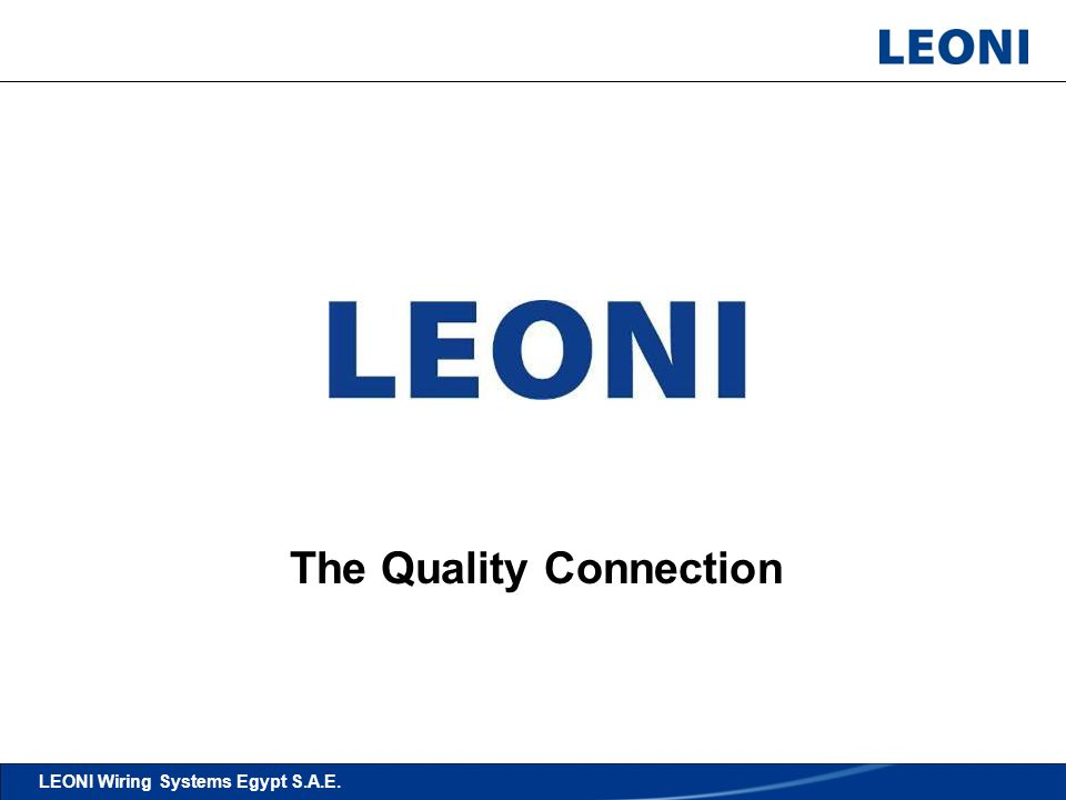 16 Stock Take Activities Details LEONI Wiring Systems Egypt S.A.E. The Quality Connection