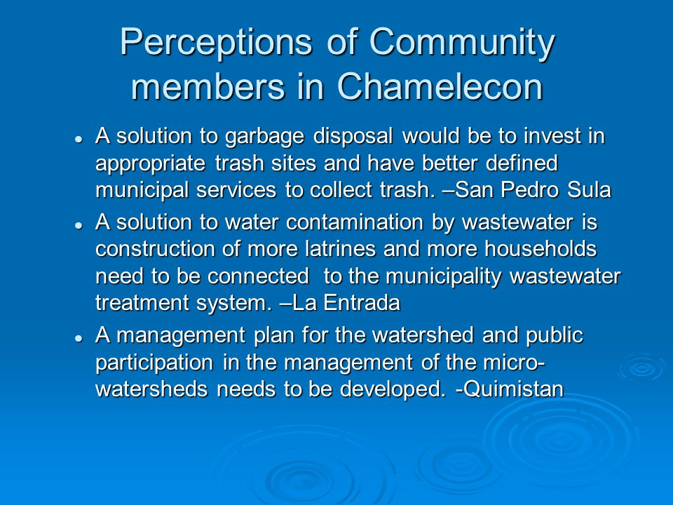 Perceptions of Community members in Chamelecon A solution to garbage disposal would be to invest in appropriate trash sites and have better defined municipal services to collect trash.