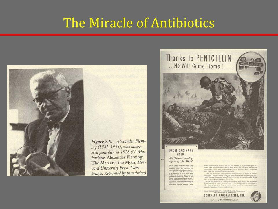 The Miracle of Antibiotics