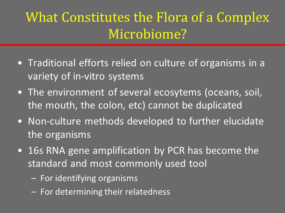 What Constitutes the Flora of a Complex Microbiome.