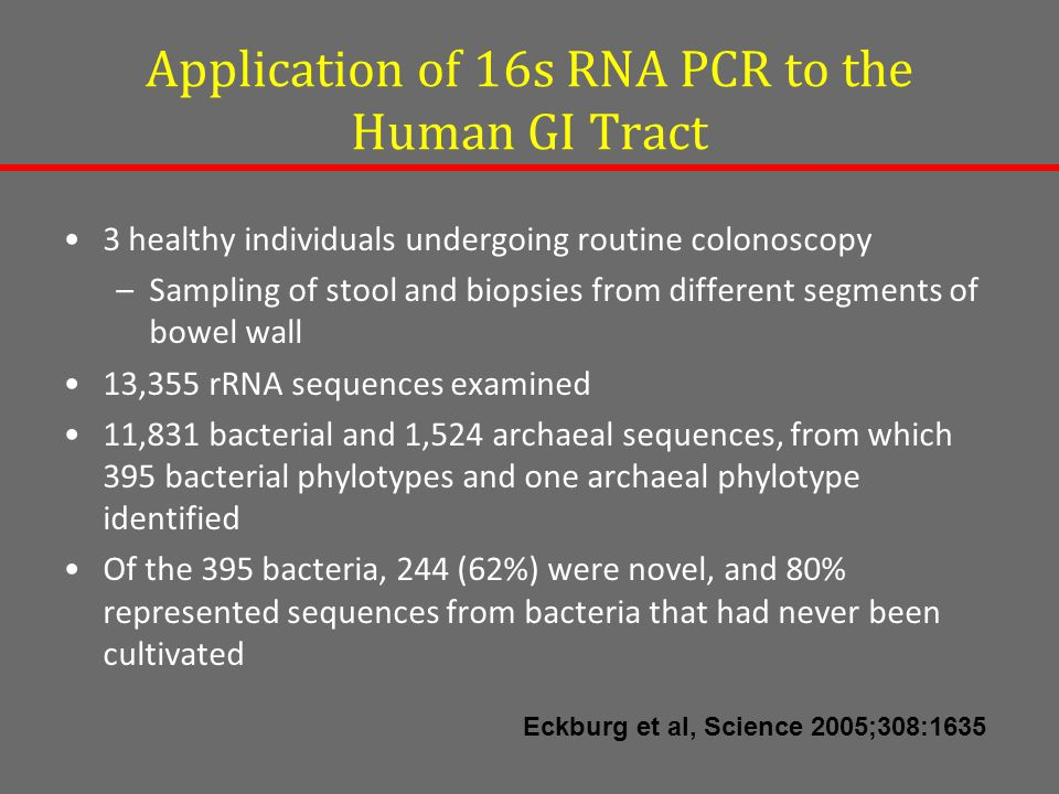 Application of 16s RNA PCR to the Human GI Tract 3 healthy individuals undergoing routine colonoscopy –Sampling of stool and biopsies from different segments of bowel wall 13,355 rRNA sequences examined 11,831 bacterial and 1,524 archaeal sequences, from which 395 bacterial phylotypes and one archaeal phylotype identified Of the 395 bacteria, 244 (62%) were novel, and 80% represented sequences from bacteria that had never been cultivated Eckburg et al, Science 2005;308:1635