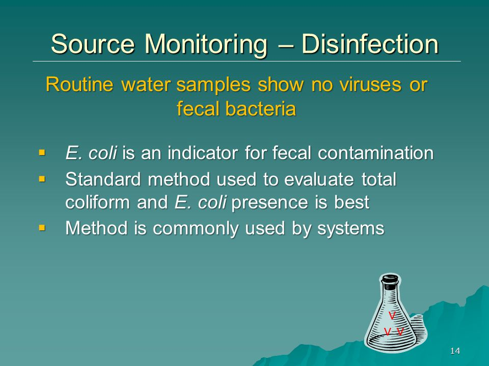 Routine water samples show no viruses or fecal bacteria v 14 Source Monitoring – Disinfection  E.