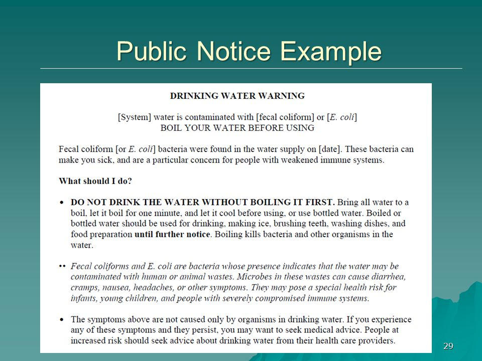 29 Public Notice Example