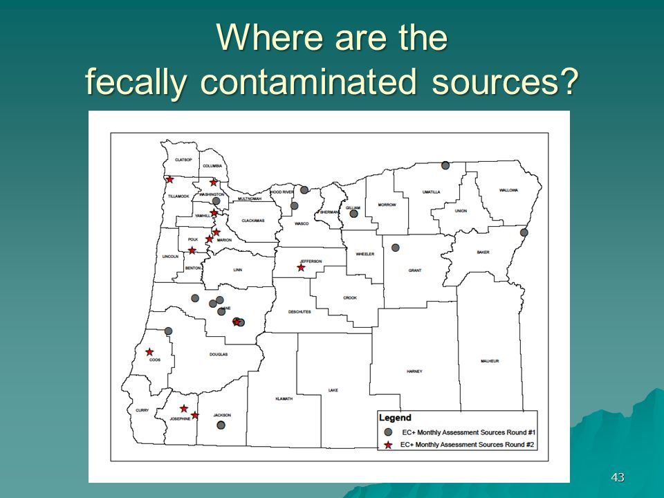 Where are the fecally contaminated sources? 43
