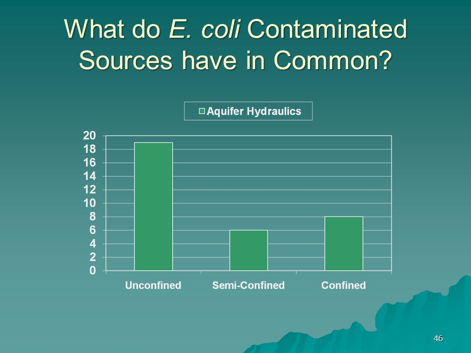 What do E. coli Contaminated Sources have in Common? 46
