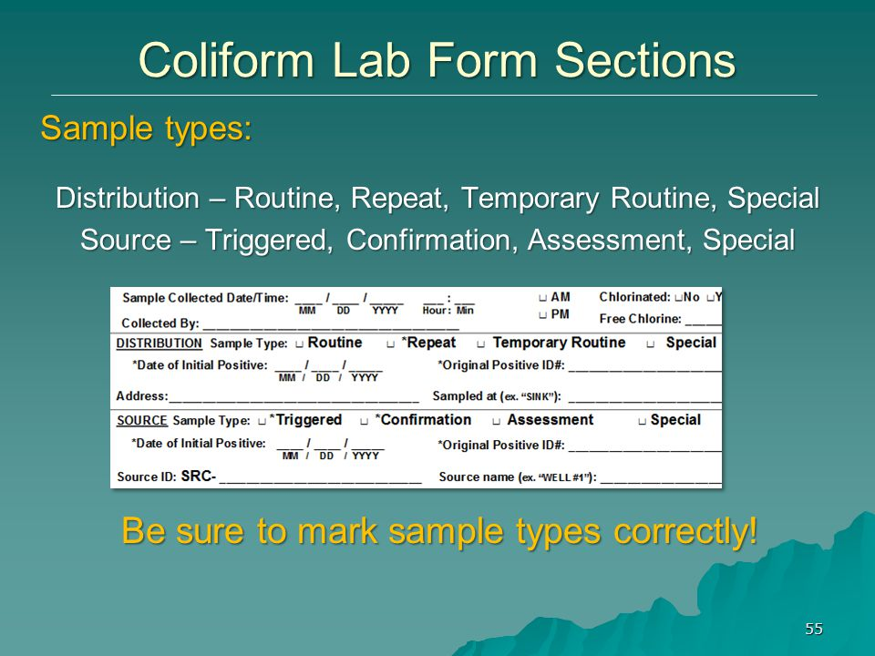 Coliform Lab Form Sections 55 Distribution – Routine, Repeat, Temporary Routine, Special Source – Triggered, Confirmation, Assessment, Special Sample types: Be sure to mark sample types correctly!