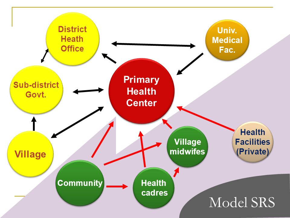 Primary Health Center Primary Health Center District Heath Office District Heath Office Univ.