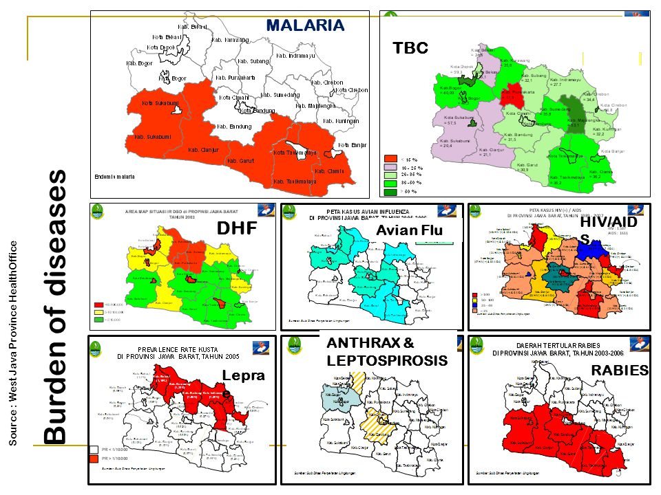TBC MALARIA DHF Avian Flu HIV/AID S Lepra e ANTHRAX & LEPTOSPIROSIS RABIES 5 Source : West Java Province HealthOffice Burden of diseases