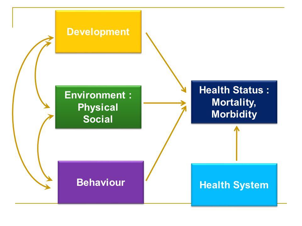 Environment : Physical Social Environment : Physical Social Development Behaviour Health Status : Mortality, Morbidity Health Status : Mortality, Morbidity Health System