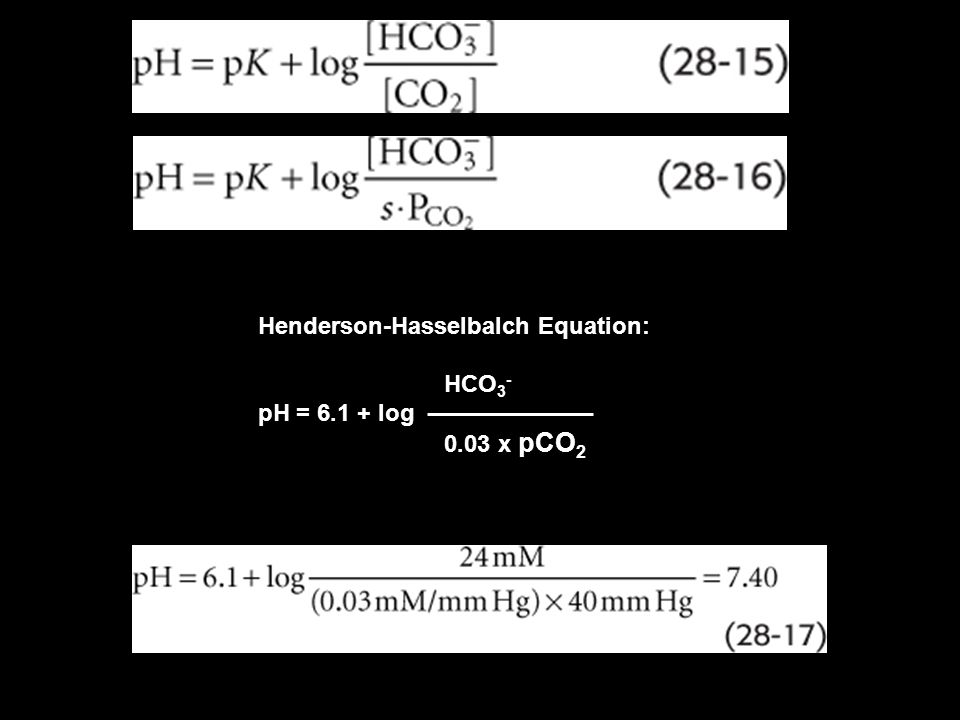 Therefore, whenever an H + secreted into the tubular lumen combines with a buffer other than, HCO 3 - the net effect is addition of a new HCO 3 - to the blood.