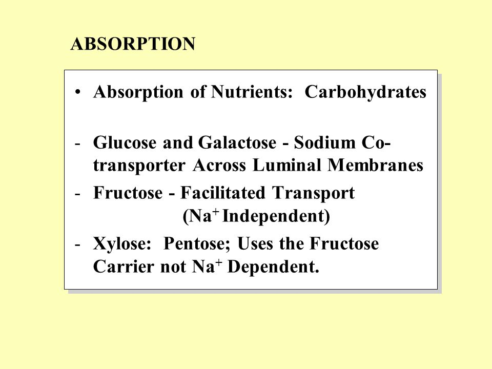 Absorption of Nutrients: Carbohydrates -Glucose and Galactose - Sodium Co- transporter Across Luminal Membranes -Fructose - Facilitated Transport (Na + Independent) -Xylose: Pentose; Uses the Fructose Carrier not Na + Dependent.