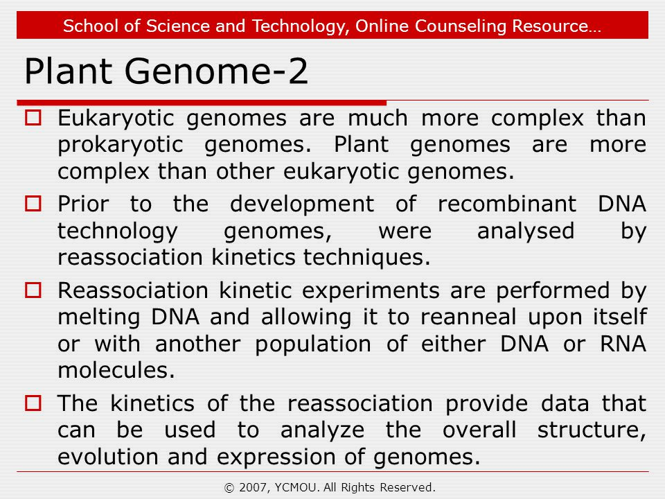 School of Science and Technology, Online Counseling Resource… Plant Genome-2  Eukaryotic genomes are much more complex than prokaryotic genomes. Plan