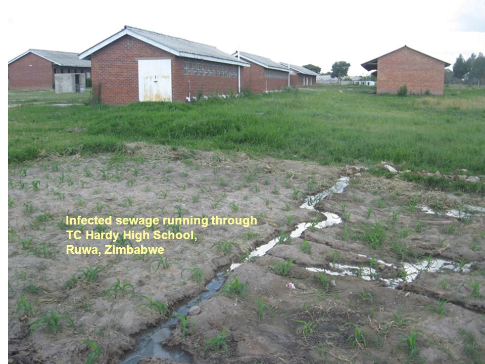 Infected sewage running through TC Hardy High School, Ruwa, Zimbabwe