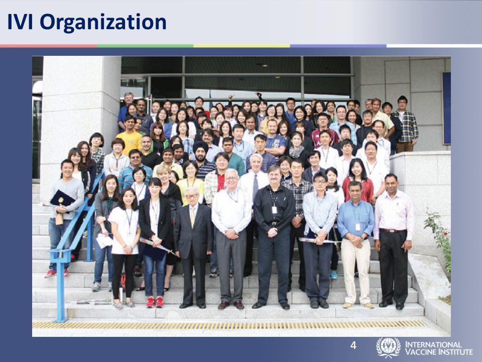 IVI Organization 4