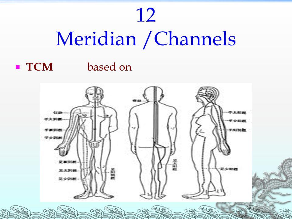 12 Meridian /Channels 6  TCM based on