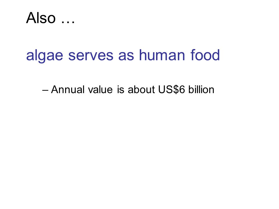 Also … algae serves as human food –Annual value is about US$6 billion