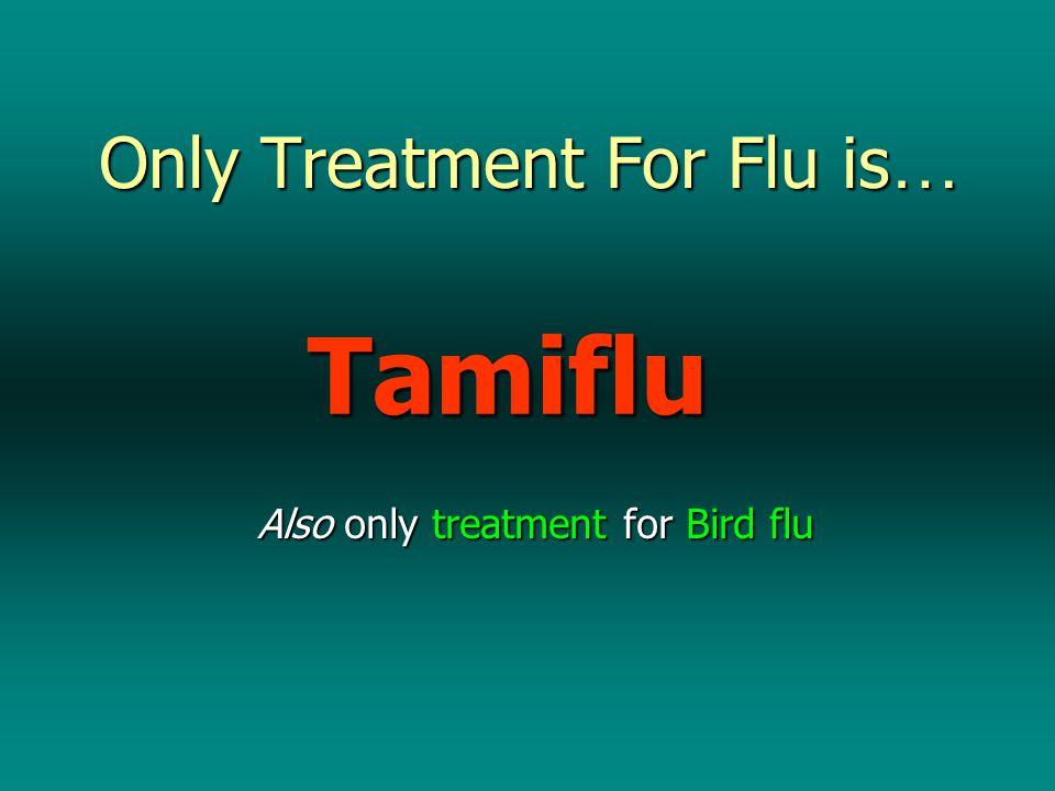 Big Tamiflu Orders.