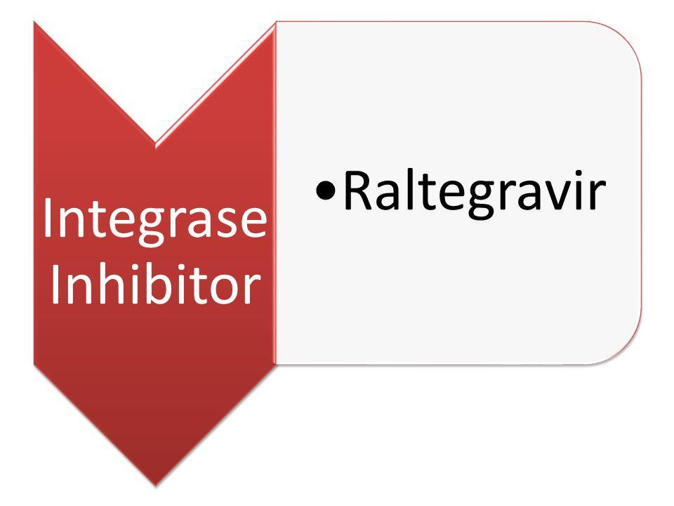 Integrase Inhibitor Raltegravir