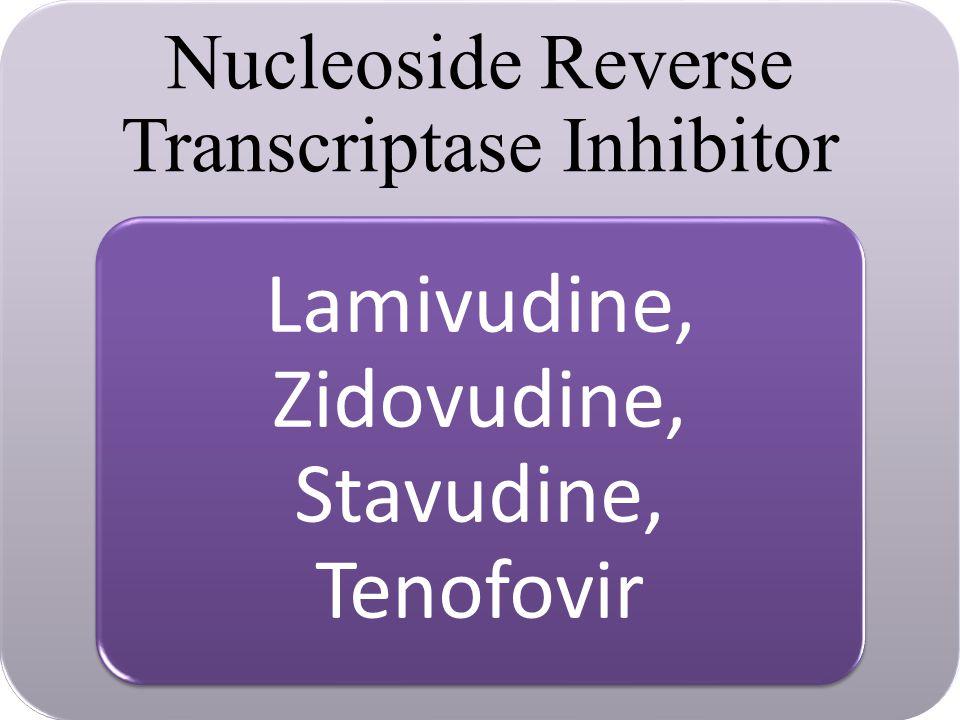 Nucleoside Reverse Transcriptase Inhibitor Lamivudine, Zidovudine, Stavudine, Tenofovir