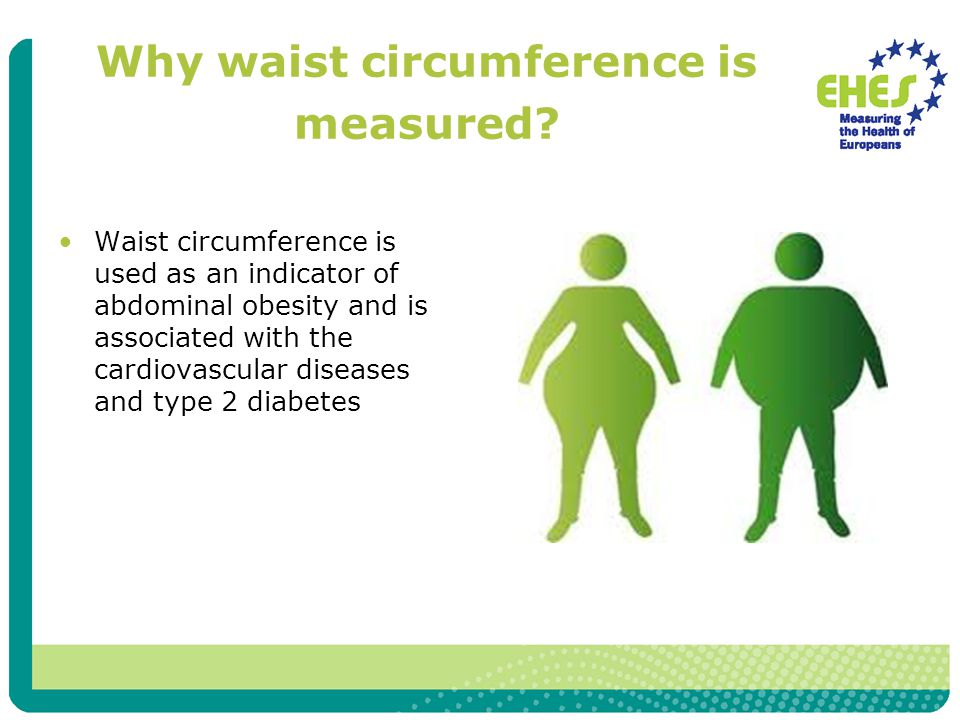 Why waist circumference is measured? Waist circumference is used as an indicator of abdominal obesity and is associated with the cardiovascular diseas