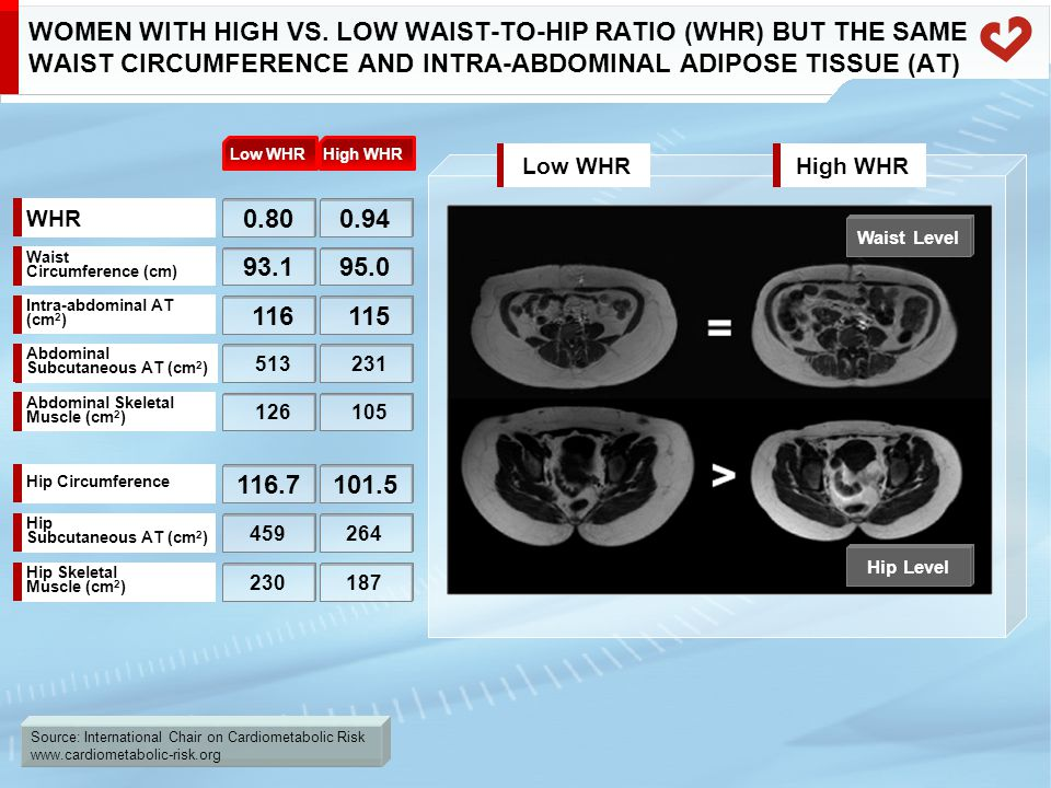 Source: International Chair on Cardiometabolic Risk www.cardiometabolic-risk.org WOMEN WITH HIGH VS. LOW WAIST-TO-HIP RATIO (WHR) BUT THE SAME WAIST C