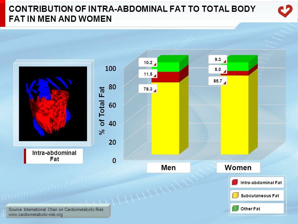 Source: International Chair on Cardiometabolic Risk www.cardiometabolic-risk.org CONTRIBUTION OF INTRA-ABDOMINAL FAT TO TOTAL BODY FAT IN MEN AND WOME