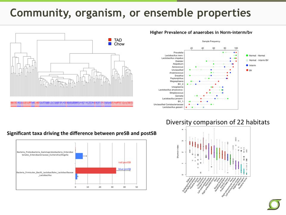 Community, organism, or ensemble properties