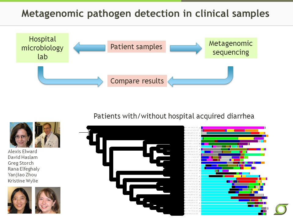 Metagenomic pathogen detection in clinical samples Patient samples Hospital microbiology lab Metagenomic sequencing Compare results Alexis Elward David Haslam Greg Storch Rana Elfeghaly Yanjiao Zhou Kristine Wylie Patients with/without hospital acquired diarrhea