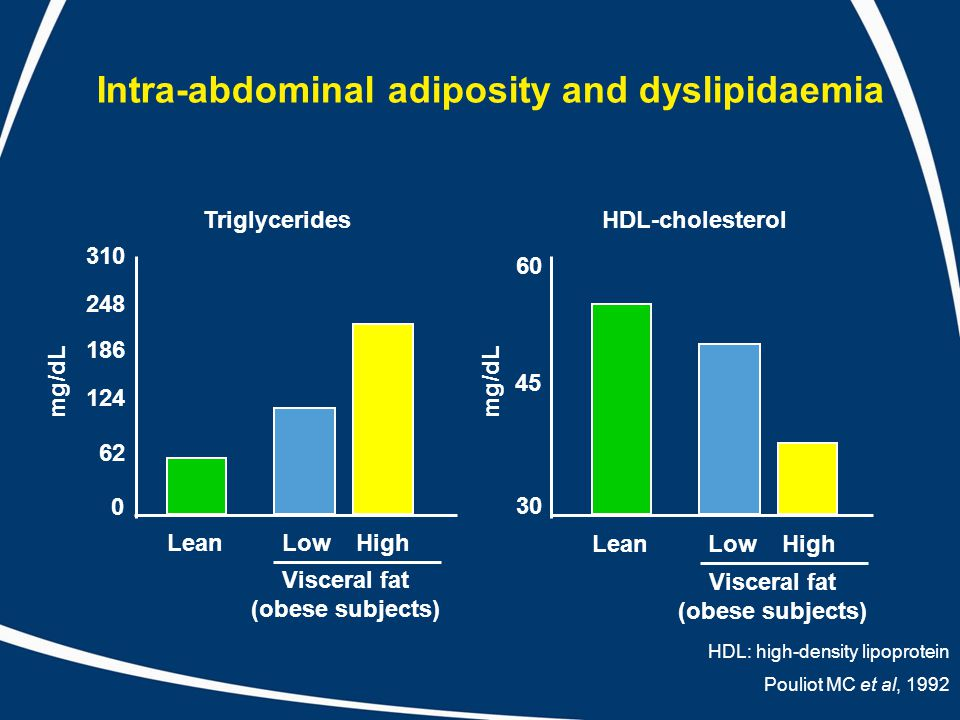 Intra-abdominal adiposity and dyslipidaemia Pouliot MC et al, 1992 310 248 186 124 62 0 60 45 30 mg/dL Triglycerides Lean HDL-cholesterol Visceral fat (obese subjects) LowHigh Lean Visceral fat (obese subjects) LowHigh HDL: high-density lipoprotein