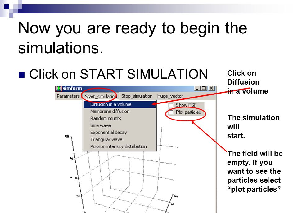 Now you are ready to begin the simulations. Click on START SIMULATION Click on Diffusion in a volume The simulation will start. The field will be empt