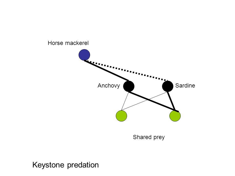 SardineAnchovy Horse mackerel Shared prey Keystone predation