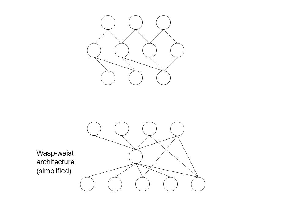 Wasp-waist architecture (simplified)